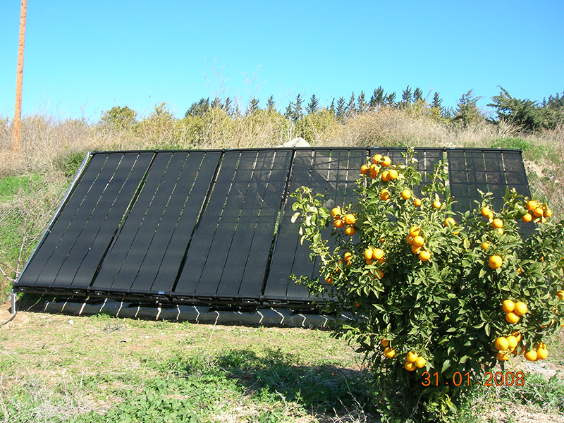 solar_panels_fruit_tree